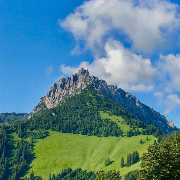 The early bird catches the sunny view ☀️⛰ #dreischwestern #feldkirch #vorarlberg #austria #liechtenstein ...