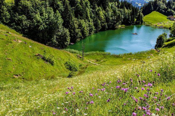 @lukas040501 #seewaldsee #hiking #hike #travell #nature #water #photography #pic #wondermore #mountainworld #vorarlberg #visitvorarlberg ...
