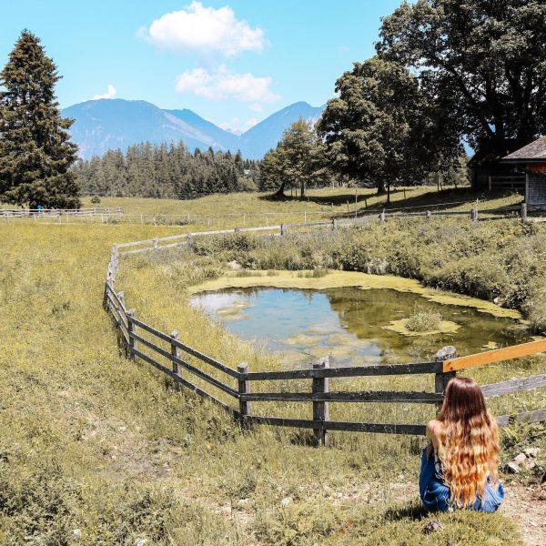 Noch ein Schnappschuss von unserem Urlaub in Vorarlberg. Ich liebe die Natur. Ich ...