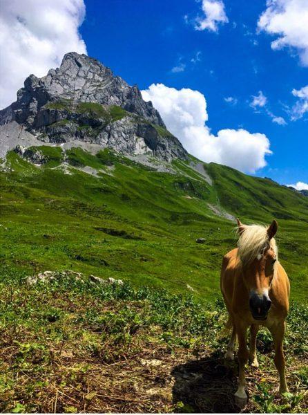 _ die atemberaubende Bergwelt entlang des Grünen Rings _ | 💚 ..aka auf ...