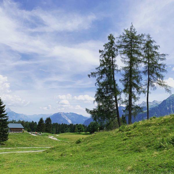 ☀️-ige Grüße vom #wandern auf der #tschengla 😊 #alperona #alpe #alpen #tschengla #wandern ...
