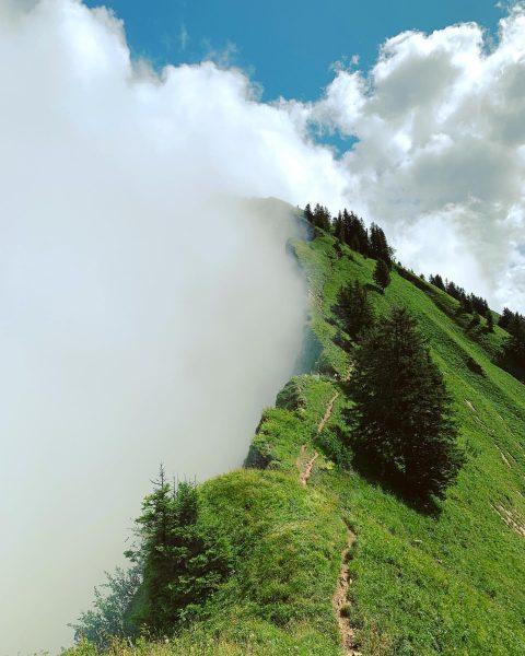 #wegzurwinterstaude #mountains #fog #berge #bregenzerwald #visitbregenzerwald #vorarlberg #explorervorarlberg #hiking #qualitytime #visitvorarlberg #nebel #wandern ...