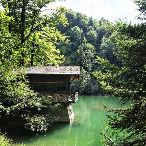 Rappen- und Alplochschlucht ... @6850dornbirn #rappenlochschlucht #alplochschlucht #staufensee #karren #dornbirn #vorarlberg #austria #wandern ...