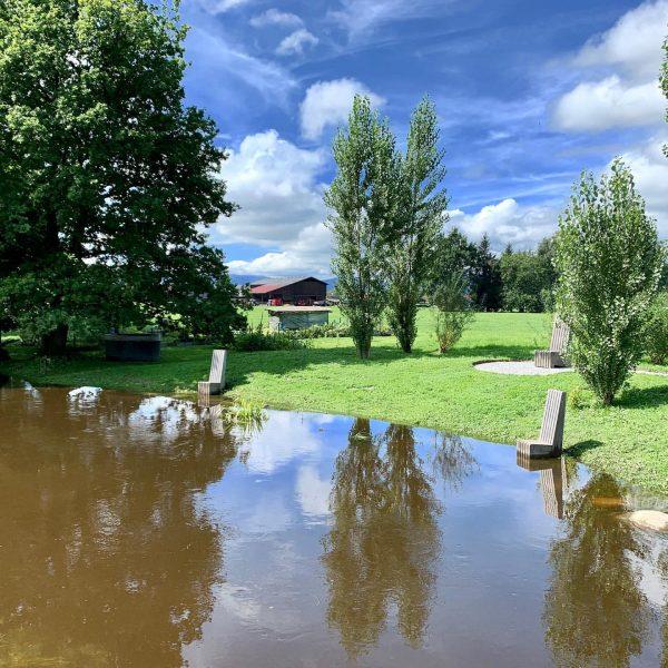 das #hochwasser am #neunerkanal in #lustenau schafft gelegenheit für sonnenbad und fußbad ... ...