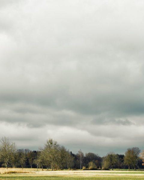 Auch das Dornbirner Ried eignet sich hervorragend für einen entspannten Spaziergang 😍 #6850dornbirn ...