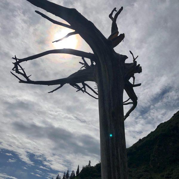 Herrlicher Wandertag bei besten Bedingungen zur #lindauerhütte Einkehr beider Alpe Spora und einen ...