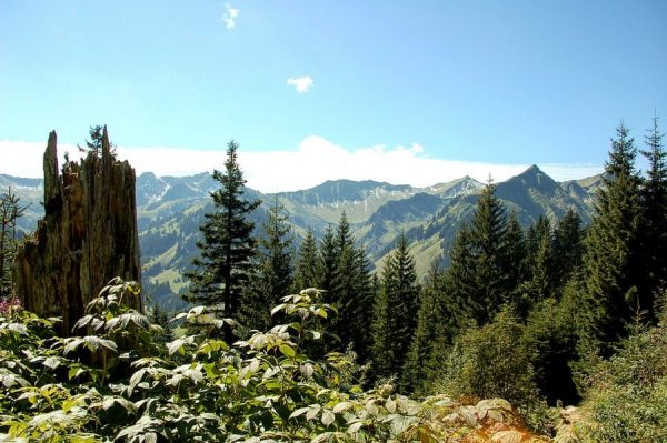Ausblicke vom Panoramaweg zwischen Heuberg- und Zafernalift . . #allgaeu_fan #kleinwalsertal #kleinwalsertaltravel #natur ...