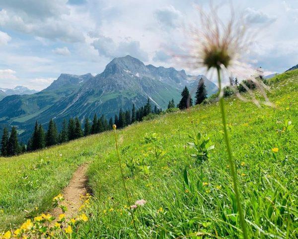 Mountains & flower meadows, what could be more beautiful? 🗻🌸😍 #montanaoberlech #oberlech #arlberg ...
