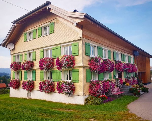 The house with 20thousand flowers #alpinehouse #floraldecor #geraniums #raw_dnw #raw_community #raw_flowers #raw_architecture #raw_pink ...