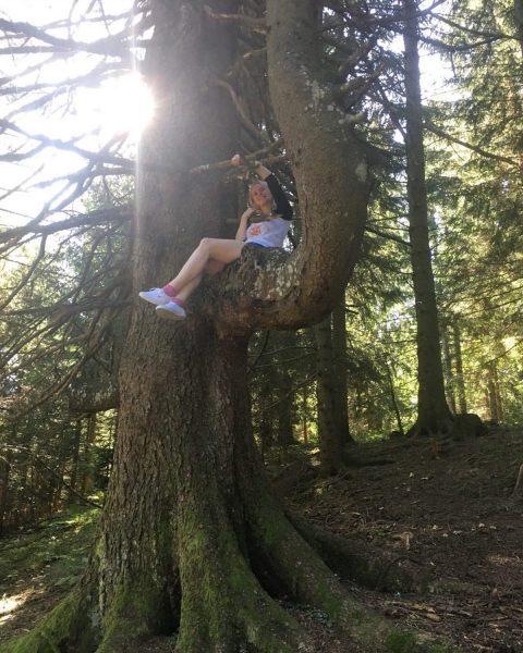 """...wenn der Onkel sagt """"Kletter auf den Baum"""", dann klettert man auf den ..."""