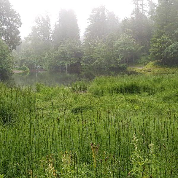 #regen in #schwarzenberg – was tun? Antworten findet ihr hier: . . #schlechtwetterprogramm ...