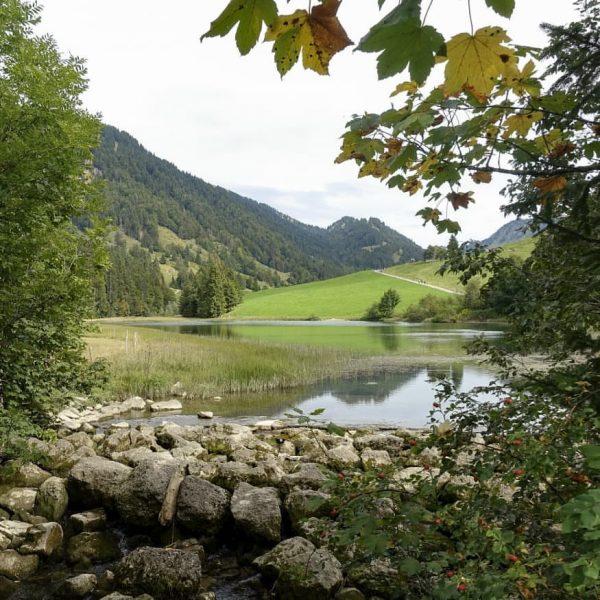 #lecknersee #lecknertal #bregenzerwald #visitbregenzerwald #visitvorarlberg #visitaustria #lieblingsplatz #wunderschön #sonntag #sonntagsausflug #landschaft #landschaftsfotografie #landscapephotography ...
