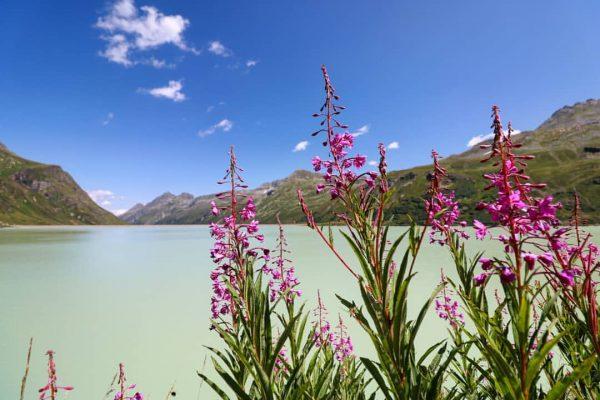 Silvretta Reservoir, Austria #silvretta #reservoir #stausee #lake #mountain #alps #vorarlberg #visitaustria #ig_austria #365austria ...