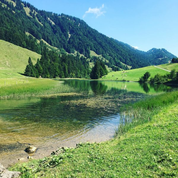schöne Radtour 🚴♀️zum Lecknersee #visitvorarlberg #meinvorarlberg #visitbregenzerwald #naturephotography #nature #spätsommer #berge #bergsee #lecknersee ...
