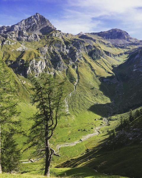 #bergwelten #alpen #alps #pfälzerhütte #malbun #augstenberg #motiviert #motivation #wanderlust #nature #hiking #hikingadventures #lifehappensoutdoors ...