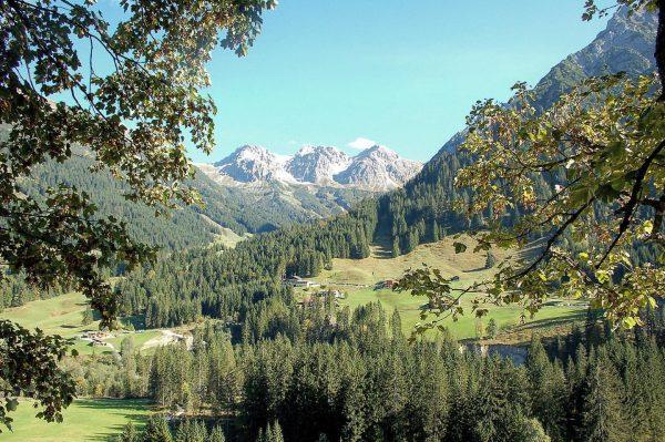 Blick auf die Schafalpenköpfe im Wildental, Kleinwalsertal ⛰⛰⛰ . . #mittelberg #kleinwalsertaltravel #natur ...