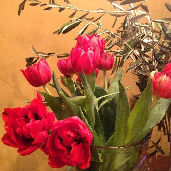 Happy Valentine's Day! 😍💞 #Brand #brandnertal #valentine #valentinstag #love #austria #vorarlberg #flowers #tulips ...