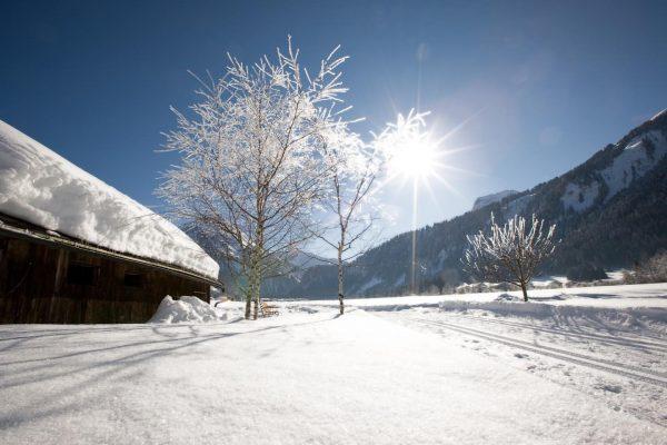 #winterwandern - ein einmaliges Erlebnis! 😍❄️ #kroneau #bregenzerwaldhotel #schnee #winter #allwhite #ski #wellness ...