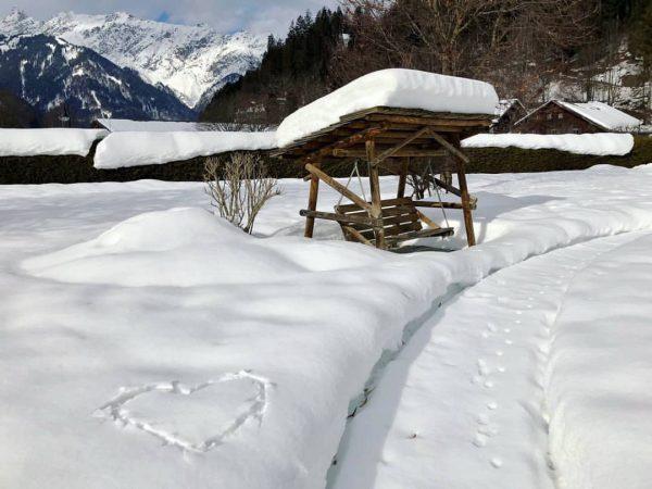 Die Schönheit des Winters😊 #hotelvitalquelle #winter #winterzauber #schnee #schönheitdernatur #winterwonderland #herzwaswillstdumehr #auszeit #schruns ...
