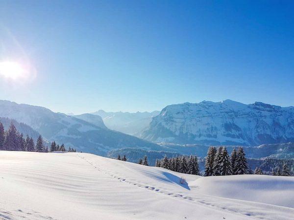 Aussicht auf die Kanisfluh 🗻☀️ • #berghofbezau #bezau #bregenzerwald #vorarlberg #österreich #austria #visitvorarlberg ...