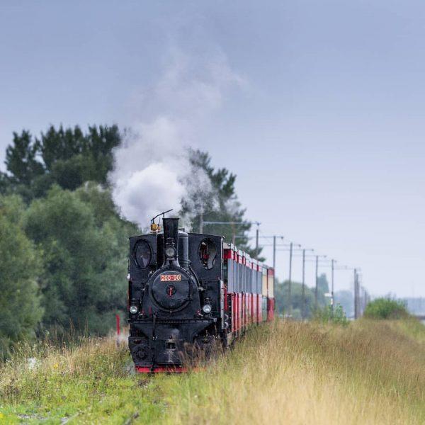 Dienstbahn der internationalen Rheinregulierung. Heute Museumsbahn . . . . . . . ...