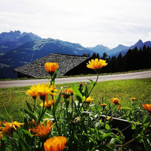 Bartholomäberg😊Montafon #mountains #heimatliebe #meinmontafon #montafon #myaustria #amazing #heimat #vorarlbergwandern #hike #outdoor #enjoylife #hotelbergerhof ...