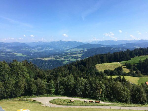Urlaubszeit 🥰 #holidays #bodensee #bergluftschnuppern #sunshine Alpenwildpark Pfänder Lochau bei Bregenz