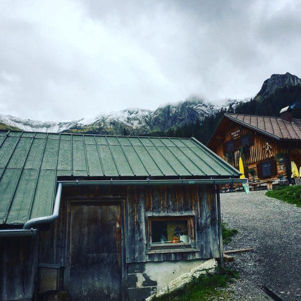 Mein lieblingsort ❤️ #mountains #onthetop #summit #climbing #berge #österreich #ichliebedieberge #wanderlust #bergsteigen #tour ...