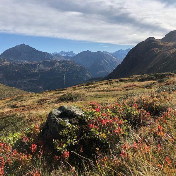 Endlich hots hüt Strudel auf der #heilbronnerhütte ge, traumhaftes Herbstwetter hat uns noch ...