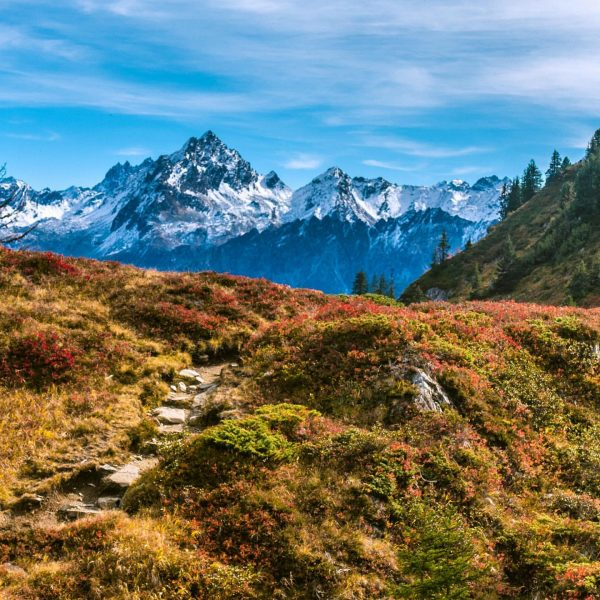 We've had some lovely autumnal views on our hike across Gantakopf in Montafon ...