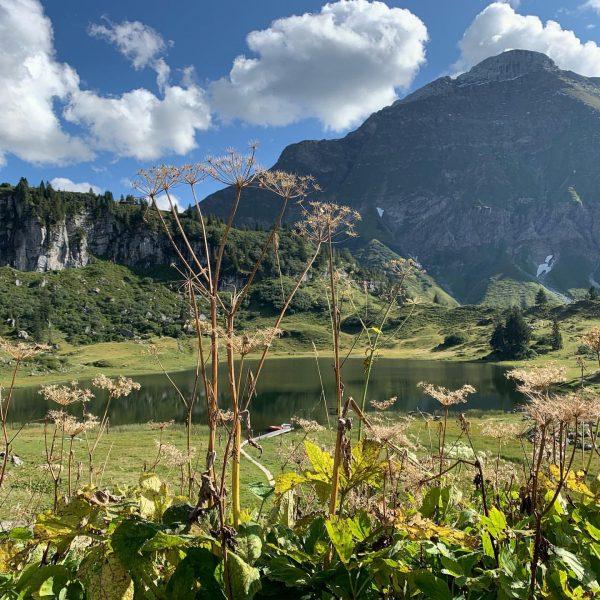 #outdoor #urlaub #aktivurlaub #familienurlaub #abenteuer #erlebnis #aktion #wandernmachtglücklich #berge @bregenzerwaldalpen @bregenzerwald #alpen #wandern ...