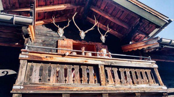 Hallo vom Golmerhaus 👋🏼 Diese drei lustigen Kücken 🐥 hatten ein wunderschönes Wochenende ...