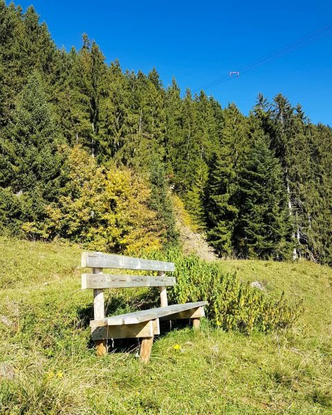 🌲🌳🌞🍂🍁 • #herbst #berghofbezau #bezau #sonderdach #bregenzerwald #vorarlberg #österreich #austria #visitvorarlberg #visitbregenzerwald #visitaustria ...