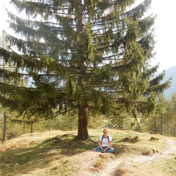 Kleine Pause auf dem Weg zur #Mondspitze #Brandnertal #Bürserberg #Vorarlberg