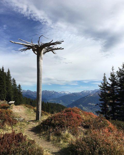 Autumn in Montafon 🍁☀️ #silvrettamontafon #tschagguns #autumnhiking #hotelmontafonerhof #golm #österreich