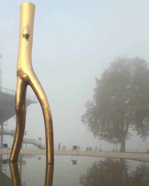 Nebliger Tag hier, aber trotzdem interessant ⭐ #foggy #day #gold #statue #bregenz #bodensee ...