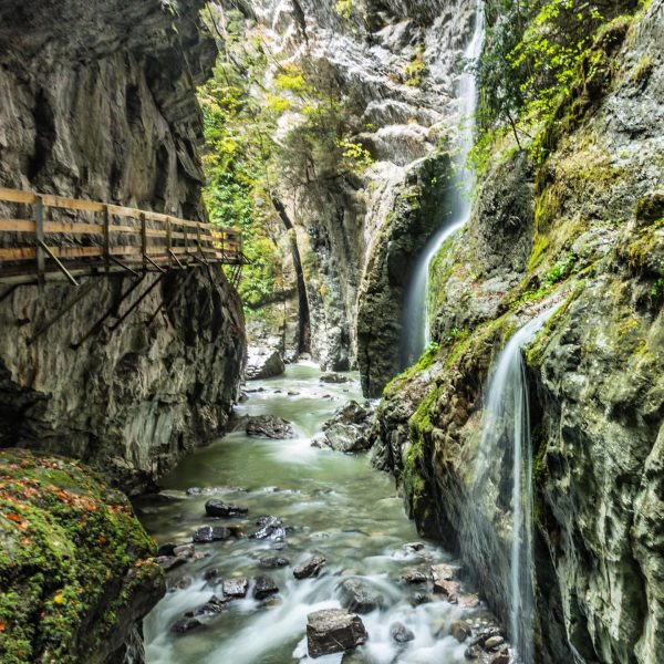 Went for a walk in Rappenloch gorge and extended it into Alploch. We ...