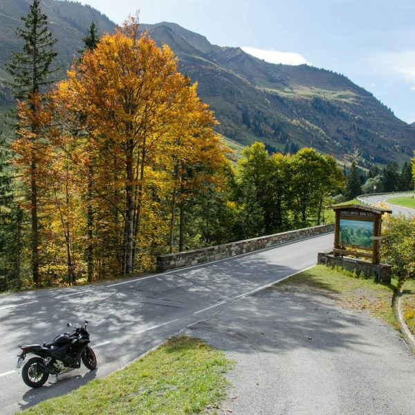 Autumn mood at the Furkajoch 🍁💛🏍🍂☀ #austria #furkajoch #bikerlife #abschlusstour #road #girlswhoride #curves ...