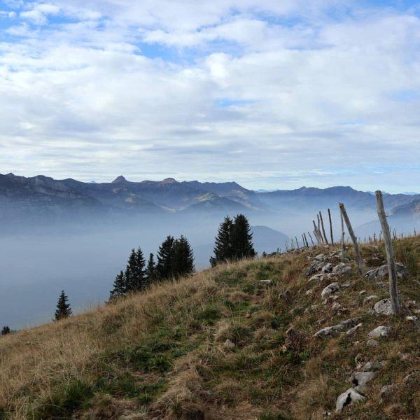 Wanderung auf die Winterstaude 🥾⛰️☀️ . . #nebelschleier #überdenwolken #bezau #baumgarten #seilbahnbezau #winterstaude ...