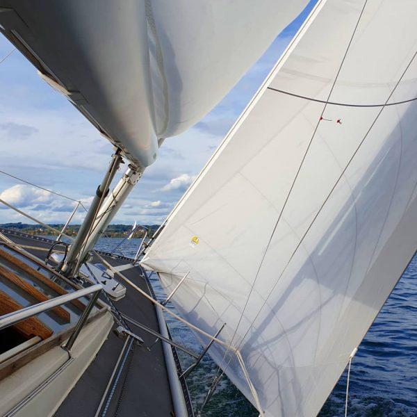 #lakeofconstance #lakelove #lakelife #goodlife #sail #sailingboat #sailing #sailinginstagram #wind #bregenz #ycrelake #bodenseepage #aphrodite101