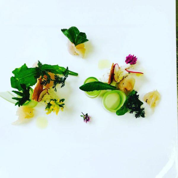 #yamyam🍲🍲 #marinaded #char with #pickedherbs #food #foodphotography #faschina #fontanella #niceevening with #foodforfoodies #alpenresortwalsertal ...