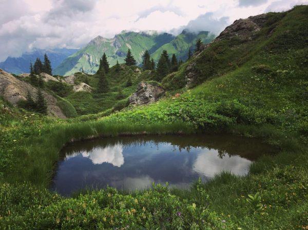 Alpenmilch und Skiwasser #gipslöcher #oberlech #gipfelstürmer #spätestensnachzweistundenmusseingekehrtwerden #daswandernistdesmüllerslust Vorarlberg
