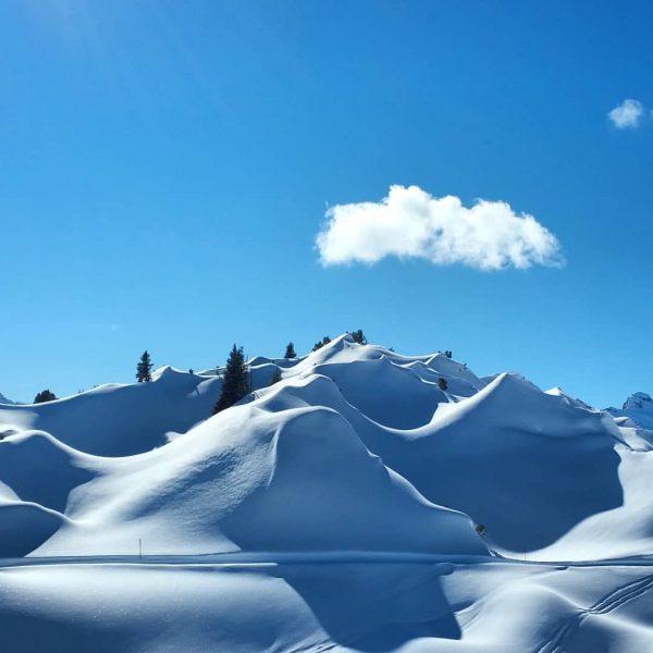 Die verschneiten Gipslöcher 🔹🔸🔹🔸🔹🔸🔹🔸🔹🔸🔹🔸🔹🔸🔹🔸🔹🔸🔹 #diereisemitdernuss #gipslöcher #naturschutzgebiet #schneelandschaft #meintraumtag #mylechzuers #lechamarlberg #123wander #earth_is_unique ...