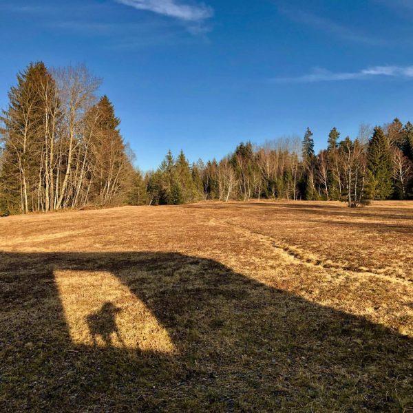 Im Moor #moorekrumbach #krumbach #bregenzerwald Krumbach, Vorarlberg
