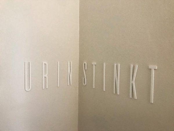 Urin stinkt #urinstinkt #bar10zimmer #dornbirn #kunstimklo #typo