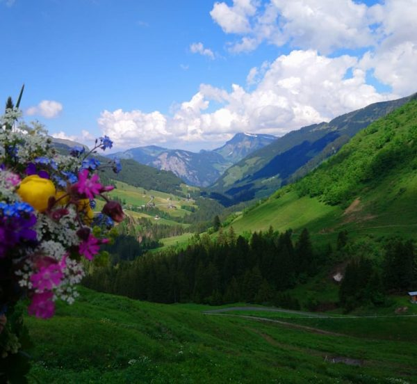 Traumwetter 😍💐☀️ #alpenresortwalsertal #ganzoben #faschina #wandern #wonderfulmonday #wiesenblumen Faschinajoch