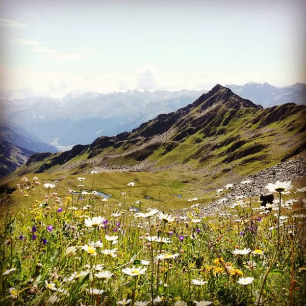 Zamangspitze😊 #montafon #ohneworte #nice #amazing #mountains #meinmontafon #heimatliebe #enjoylife #hotelbergerhof Hochjoch (Verwall)