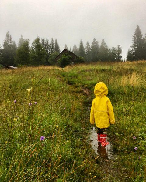Bei uns so... (gestern) #regentag #regenspaziergang #nassbisaufdiehaut #ohboy #urlaubindenbergen #kleinkind #digitaldetox #rainyday #hochmoor ...