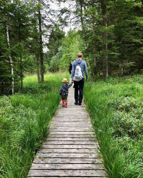 Baba, Bödele #letzterurlaubstag #letztewanderung #wirkommenwieder #backhome #viennacalling #fatherandson #urlaubmitkind #fohramoos #bödele #dornbirn #vorarlberg