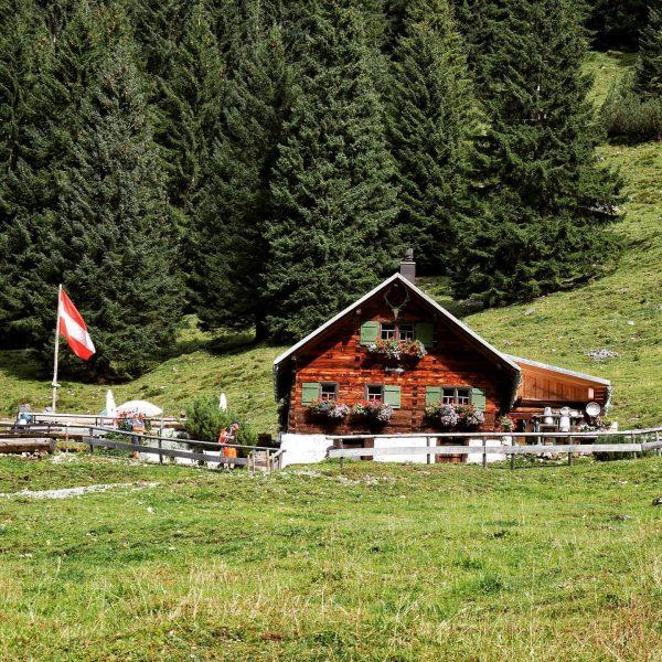 Fluchtalpe im Kleinwalsertal 🇦🇹Eine Wanderung zur Fluchtalpe führt durch das wunderschöne Wildental . ...